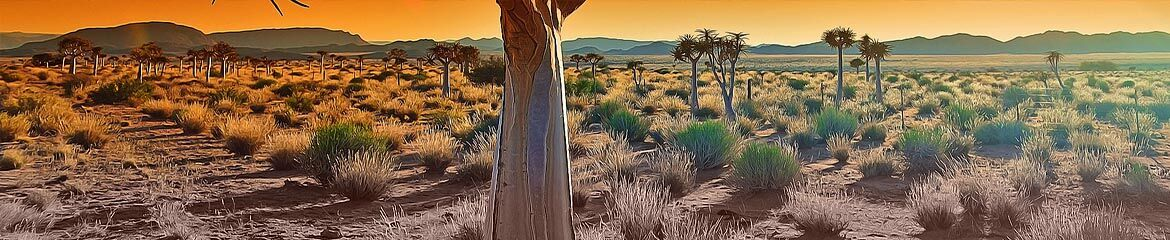 Hantam Karoo & Upper Karoo Accommodation footer banner